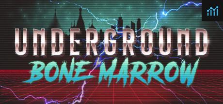 Underground Bone Marrow System Requirements