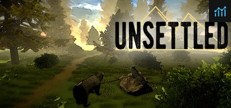 Unsettled System Requirements