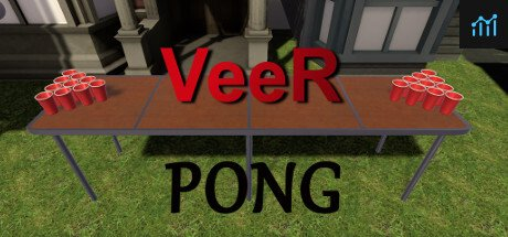 VeeR Pong System Requirements